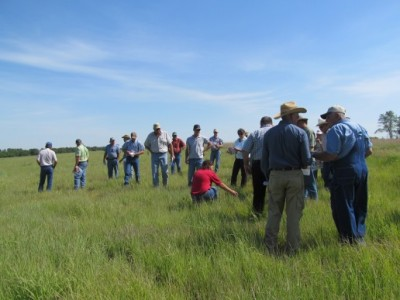 All Kansas Pheasants Forever and workshops are Quail Forever free and open to public.