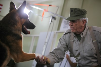 Series produced by Craig Piligian's Pilgrim Studios details incredible relationships between military and law enforcement service dogs and their handlers.