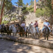 California game wardens during Mounted Patrol training June 1 through 5.