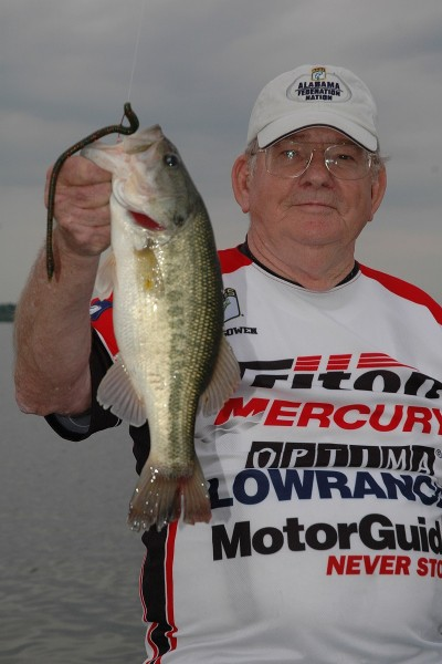 Bass fishing thrives in alabama according to annual b a i for Wheeler lake fishing report