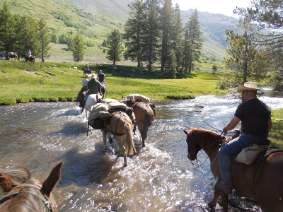 Wardens cross rivers on horses during recent Mounted Patrol training.