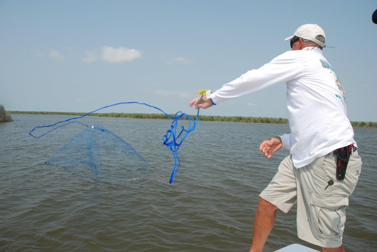Catching your own summer baits outdoorhub for Throw nets for fishing