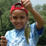 Simple tackle, live bait, a place with open-shore access to plenty of panfish, and lots of patience on your part are the keys to successfully teaching a kid to fish.