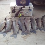 Keeping your bowfishing plan and setup simple can still yield impressive results.