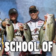 Cabela's school of the year banner