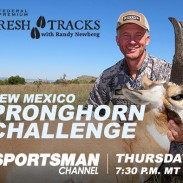 freshtracks-pronghorn