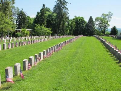 Overpopulated deer now threaten the environments of three Civil War battlefields.