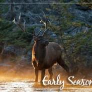 Early Elk season the revolution