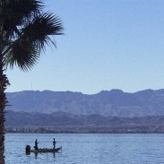 The fourth event on the 2015 Elite Series schedule will be held on Lake Havasu out of Lake Havasu City, Ariz., May 7-10. Lake Havasu was ranked No. 20 on Bassmaster's 100 Best Bass Lakes list in 2014.