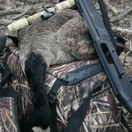 For the discerning bird hunter, Quebec has a lot to offer.