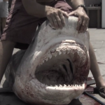 A Texas angler caught this toothy beast after a seven-hour battle.