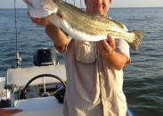 Jay Gunn holds a gator trout caught this summer near Fort Morgan that measured 30-1/2 inches.