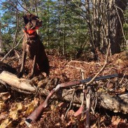 "Hunters know that sporting dogs aren't just ""tools"" of the trade. They're members of the family, too, and every upland hunter should be prepared to provide care for their dog in the event of an emergency. Image by Britney Starr."