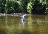 Dirk Fischbach battles a Flint River bass.