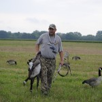 Joe Robison retrieves giant Canada geese from a cut wheat field in Southeast Michigan.