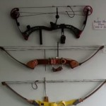 Thieves in Western Canada made off with eight rare bows from an archery shop.