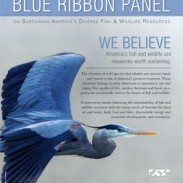 blue ribbon panel