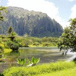 Trappers are eager to enter Oahu's lush Hoomaluhia Botanical Garden.