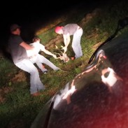 These three Iowans helped a 10-point buck escape from sinkhole.