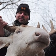 Bowhunter Jerry Kinnaman displays his albino buck, which was taken on his property this week.
