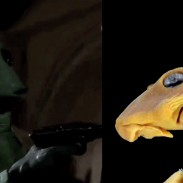 Greedo (left) and the catfish named after the character.