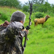 Modern bowhunting comes with a lot of positive health benefits, and sometimes high-quality meat. What's not to love?