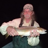 Big brown trout, like this one, come out during the hex hatch on the Au Sable River.