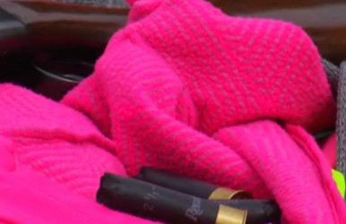 Could blaze pink be even more effective than orange? Wisconsin legislators think so.