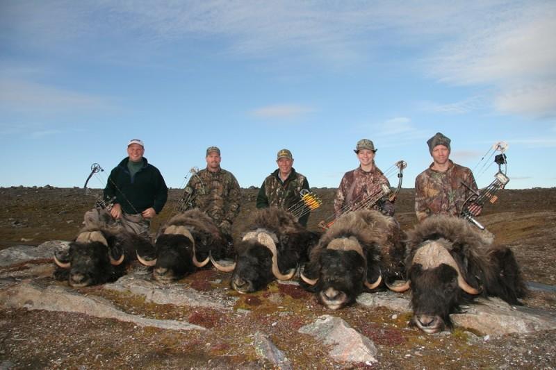Five bulls for five hunters.