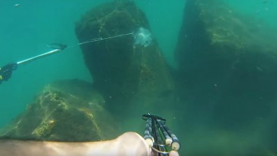 Video This is One Epic Spearfishing Fail