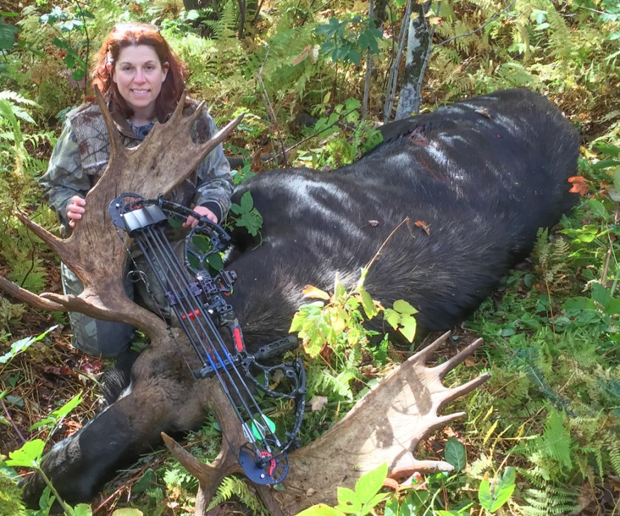 Tammy Miller took this record bull moose on the second day of Vermont's archery season.