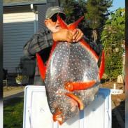 Jim Watson holds up a rare opah caught off the Washington coast.