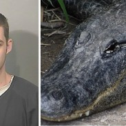 Matthew Riggins is believed to have been killed by an alligator while scoping out a neighborhood for burglary.