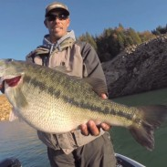 worldrecordbass314