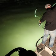 Shooting fish at night with artificial light is a challenging, entertaining, and exhilarating way to enjoy bowfishing. It is a sport that has exploded in popularity in the past decade.