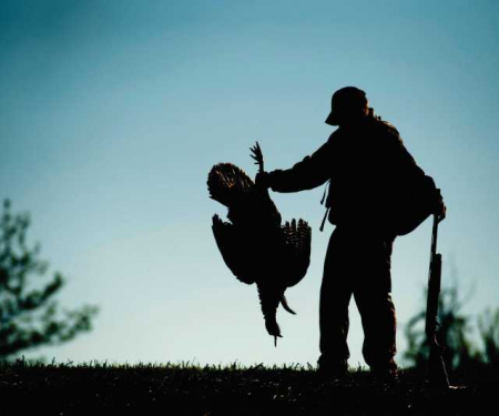 Hunter holding turkey 5-24-16