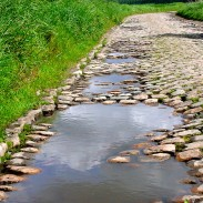 The race's terrain includes cobblestone paths that increase difficulty.