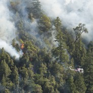 The fire is the largest in the county in 20 years.