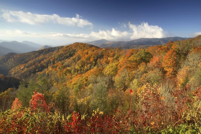 Thru-hike the Appalachian Trail | ActionHub