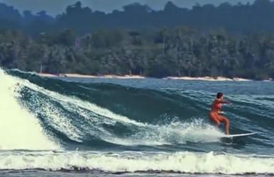 surf post