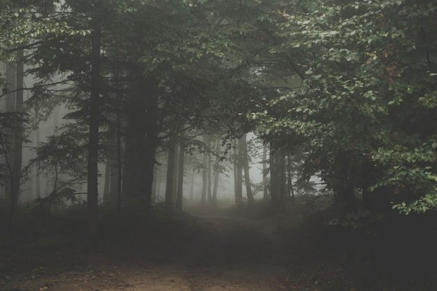 haunted-hiking-trails